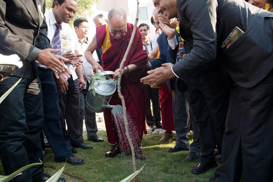 2019 02 04 Dharamsala G07 A734389
